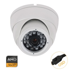 1.3 MP IP Dome Camera